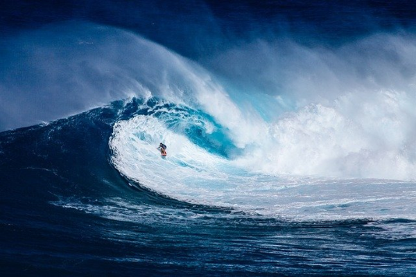 Web surfing or spume